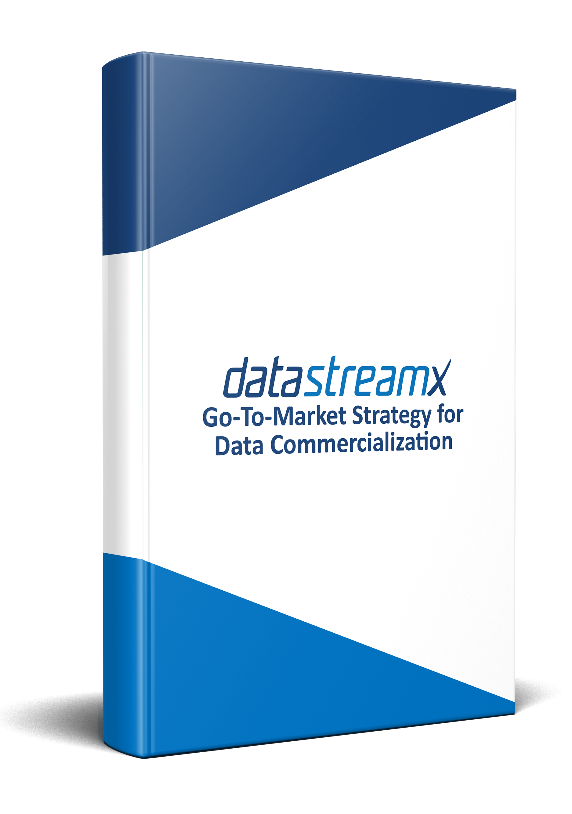 Go-To-Market Strategy for Data Commercialization